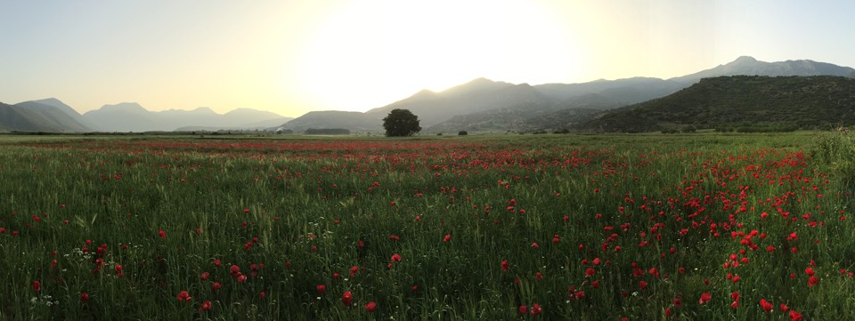 Grèce, Péloponnèse, Milos